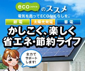 ecoスタイルのススメ 「節電」「太陽光発電」「蓄電」かしこく、楽しく 省エネ・節約ライフ-家計にやさしく、環境にやさしい