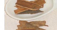クスノキ科ケイ類の幹皮