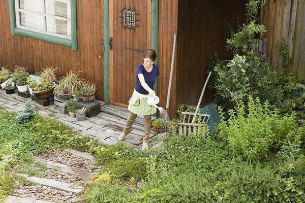 かわいいお庭を作りましょう、シニア(60代・70代)の本場イギリス風ガーデニングの始め方