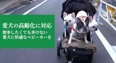 散歩したくても歩けない愛犬にベビーカーを