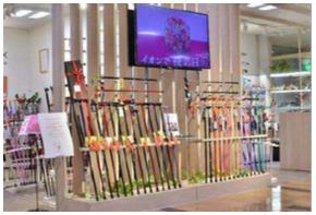 ステッキの専門店「ファンタステッキ」ーイオンスタイル新茨木
