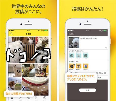 ドコノコ-いぬねこ写真アプリ