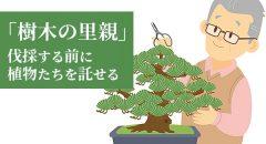愛着ある植物たちを託せる「植木の里親」、6年で10倍以上の依頼