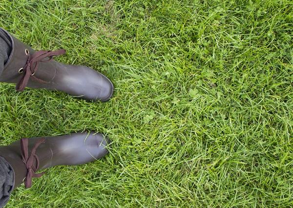 暖かい季節。靴の中は菌だらけ?水虫にも種類がある