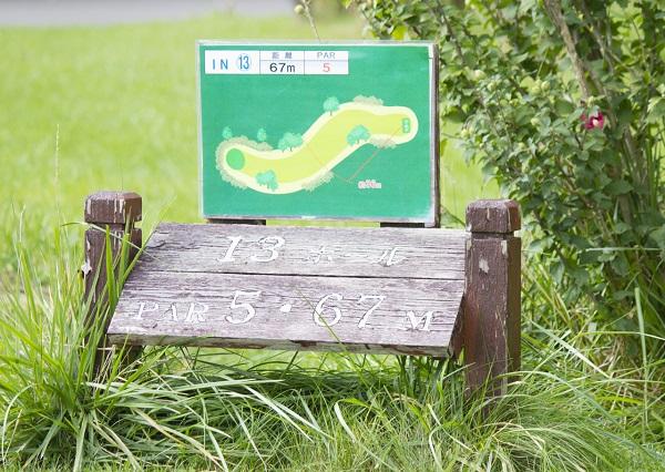 パークゴルフを始めるには 打ち方などを教えてくれるアドバイザーがいる場所は東京にある?