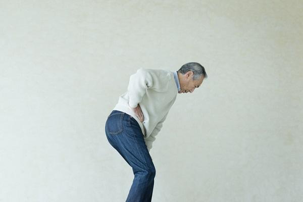 下半身の大きな「筋肉」が効果的 スクワットで足腰を鍛えよう