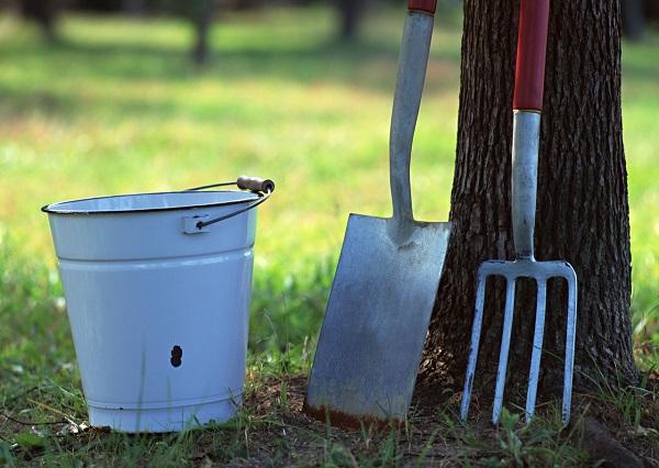 野菜を育てたことがなくても、道具がなくても簡単に始められる!