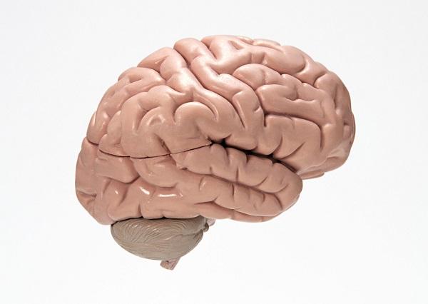 完全無料「脳にいいアプリ」とは?目標を達成し、評価する仕組み