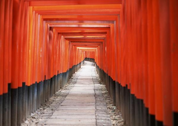 京都で本格的な学び直し講座を受講してみませんか?