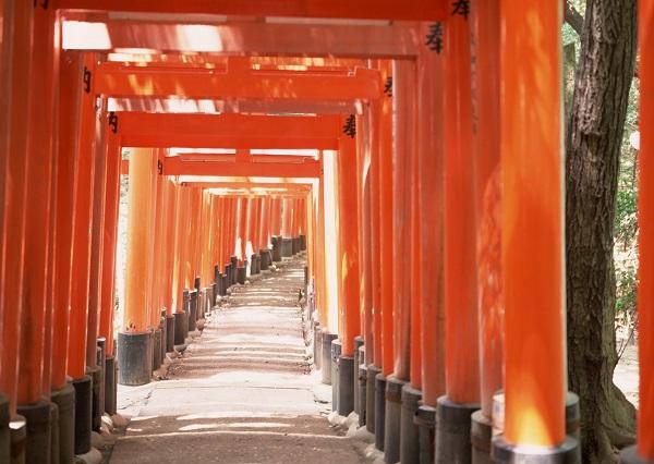 京都リカレントステイで自走で生きるヒントが見つかる!