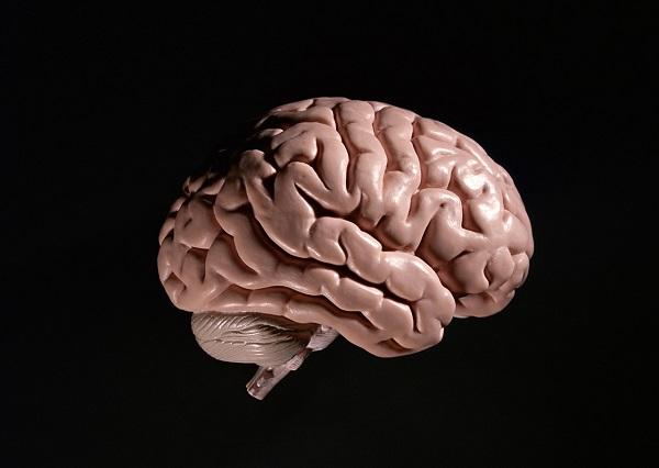 日記を書くと記憶力アップ?認知症予防につながるかも